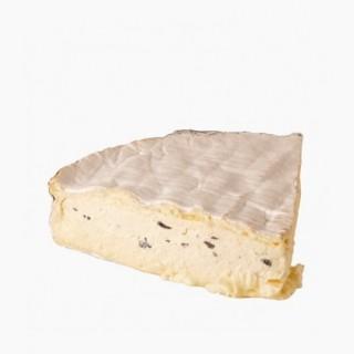 brie-trufat-xavier
